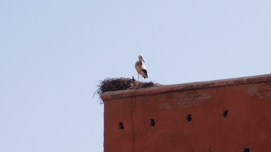 The stork that watches the gate to the city...
